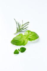 Fresh Herbs on White Background