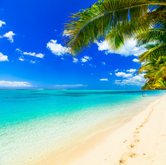 Tropical getaway - perfect beach with turquoise waters