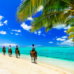Wall Mural - Horse riding on tropical beach. Mauritius island