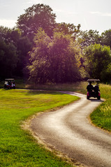 Electric car on the golf course, active leisure, quiet sport, recreation.