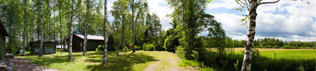 Panorama - summer, forest, Sunny day, houses