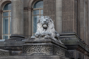 Wide Lion Leeds Town Hall