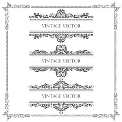 calligraphic vector of vintage ornamental decorative frame