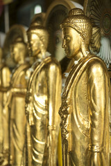 STANDING GOLDEN BUDDHA  IMAGE