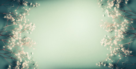 Pretty Little white Gypsophila flowers on turquoise green background, pretty floral frame, top view, copy space, banner