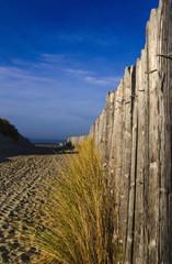 plage paysage