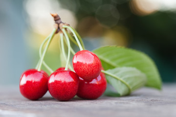 Red cherry berry branch with green leaves. Ripe fruit macro view photo. Selective focus, shallow depth of field. Beautiful bokeh background