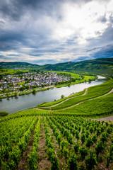 Zell (Cochem) - Germany