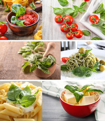 Collage of different dishes with basil leaves