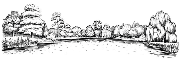 Panoramic landscape with forest and lake, vector hand drawn illustration.