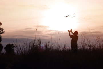 silhouette of women posing and showing hand in shape of bird on sky in  twilight, concept as thinking, freedom,  free life, analyzing  about business and success in working  at sunset