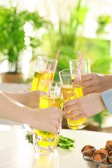Friends cheering with glasses of  refreshing lemonade on picnic