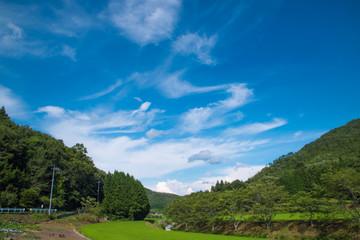 Foto auf AluDibond Karibik 初夏の青空と雲と田んぼ