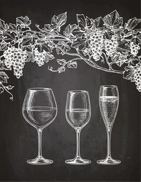 Wineglasses and grape vine on chalkboard