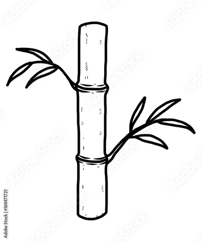 Bamboo Tree Cartoon Vector And Illustration Black And White Hand