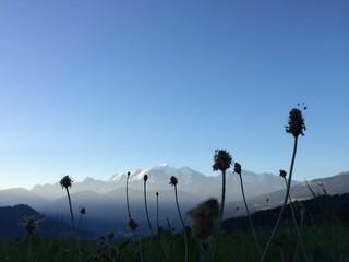 Mont Blanc arrière plan