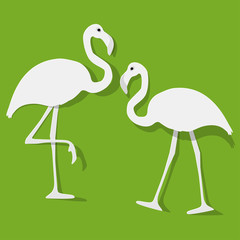 Two Flamingos couple white on a green background.