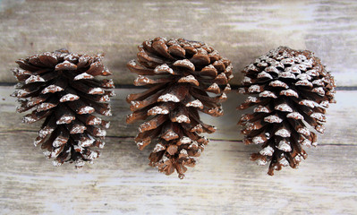 Three Pine Cones on a wooden background rustic
