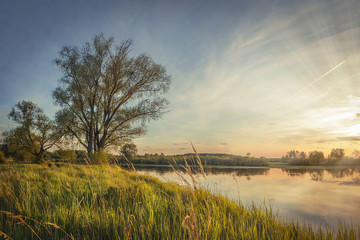 Autumn landscape of a tree on the river bank at sunset. Bright colorful landscape of early autumn