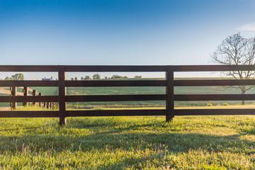 Horse Fence Across Field Wall mural