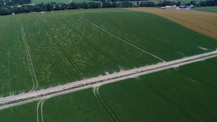 北海道 美瑛の丘 パッチワーク 夏 風 7月 8月 麦畑 直線 広大な土地  空撮 農業 機械化 上空 爽やか 道 農道 トラクター
