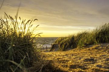 Strandzugang auf einer Düne an der Ostsee