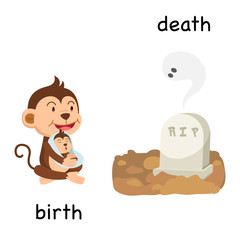 Opposite birth and death illustration