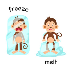 Opposite freeze and melt illustration