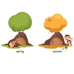 Opposite spring and autumn illustration