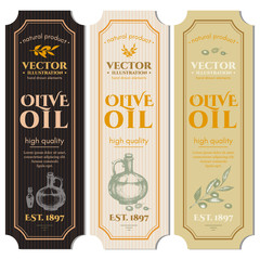 Olive oil banner. Labels for olive oils retro vintage vector