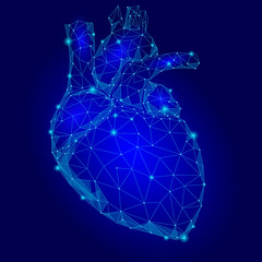 Human Heart Internal Organ Triangle Low Poly. Connected dots blue color technology 3d model medicine healthy body part vector illustration