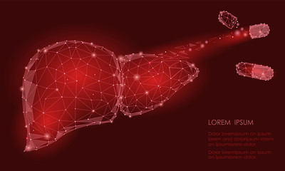 Treatment regeneration decay Human Liver Internal Organ Triangle Low Poly. Connected dots red color technology 3d model medicine capsule tablet drug vector illustration
