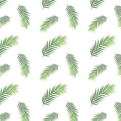 Tropical palm pattern. Seamless pattern of tropical palm leaves.