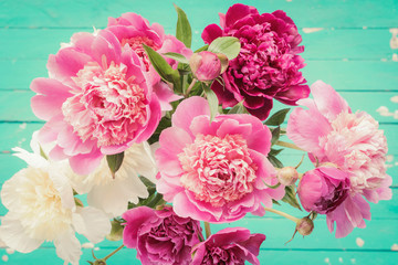 Peony flowers bouquet on vintage old turquoise background. Pastel bouquet. Closeup view, selective focus