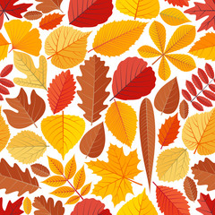 Seamless pattern with autumn tree leaves. Cartoon vector illustration.