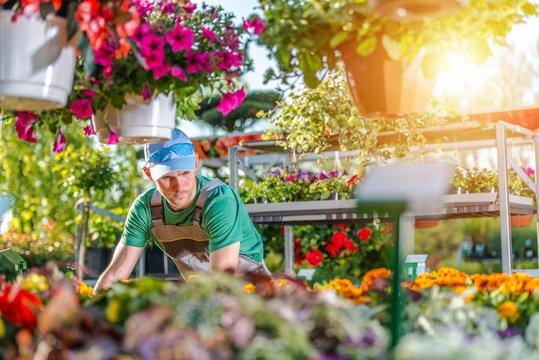 Florist in His Garden Store