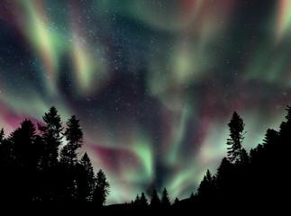 Shining aurora