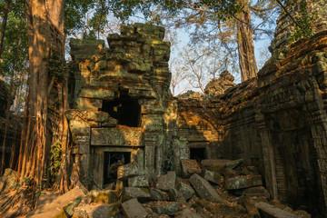 Ruins of Ta Prohm, Angkor Wat, Cambodia