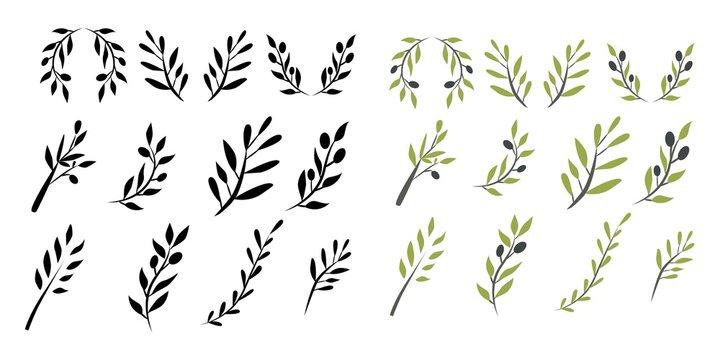Olive brunch set. Digital illustration