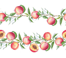 Hand drawn watercolor borders with the peaches on the branch. Fruit frame template