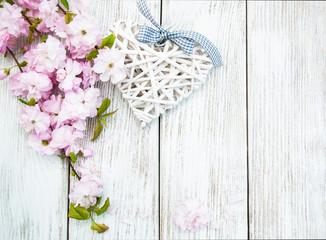 Sakura spring blossom