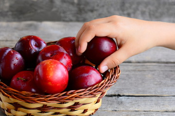 Child takes a plum out of a basket. Fresh juicy plums in a wicker basket on an old wooden table. Healthy eating for kids