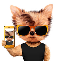 Animal taking selfie in t-shirt and sunglasses