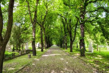 Kerepesi - historic cemetery in Budapest, Hungary