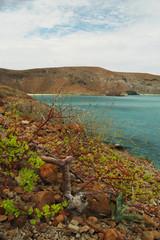 Balandra beach, La Paz Baja California Sur. MEXICO