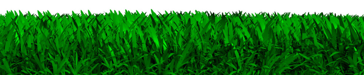 3D illustration of green grass