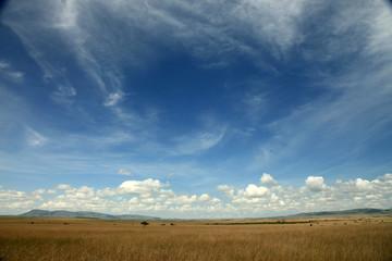 The Great Rift Valley - Maasai Mara - Kenya Wall mural