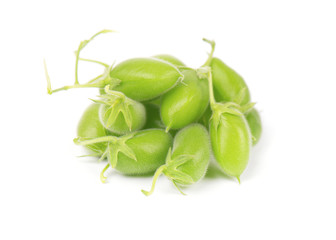 Green chickpeas in the pod isolated on white background