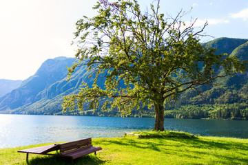 Mountain lake in summer - Lake Bohinj