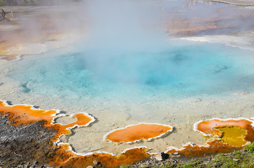 Silex Spring Yellowstone